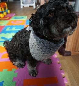 ♡ Hundehalstuch Farbverlaufswolle Grau ♡ amigoll9 ♡ Deko ♡ Handmade ♡ - Handarbeit kaufen