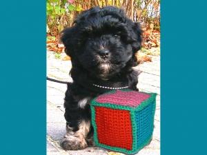 Häkelanleitung Hundespielzeug