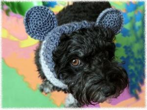 Häkelanleitung für den Hundeloop/Ohrenwärmer mit Mäuseohren (Schal) ♥ - Handarbeit kaufen