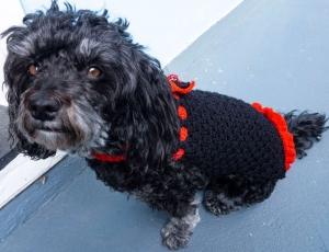 Häkelanleitung für das Hundekleid schwarz/rot Schleife - Handarbeit kaufen