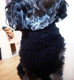 Hundehalstuch in der Farbe schwarz / Glitzer Halsumfang 41-59cm ♡ amigoll9 Handmade - Handarbeit kaufen