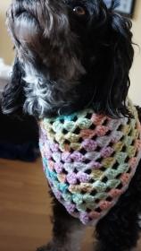 Hundehalstuch in der Farbe Regenbogen Halsumfang bis 36cm ♡ amigoll9 Handmade - Handarbeit kaufen