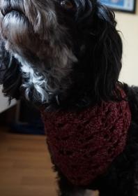 Hundehalstuch in Farbverlaufswolle Rottöne Halsumfang bis 33cm ♡ amigoll9 Handmade - Handarbeit kaufen