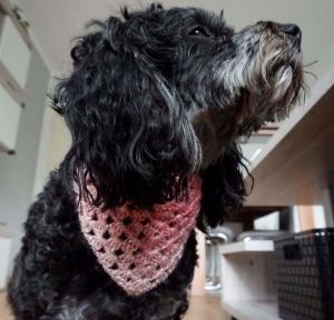 Hundehalstuch ♡ Farbverlaufswolle rosa glitzer ♡ mit Schiebeknoten ♡ amigoll9 Handmade - Handarbeit kaufen