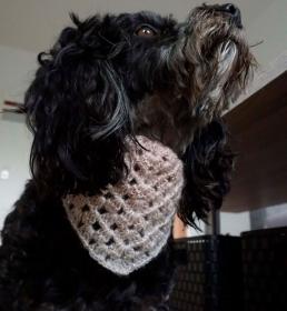 Hundehalstuch ♡ Farbverlaufswolle zartrosa grau glitzer ♡ mit Schiebeknoten ♡ amigoll9 Handmade - Handarbeit kaufen
