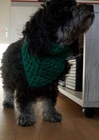 ♡ Hundehalstuch dunkelgrün ♡ bis 38cm Umfang ♡ Handarbeit ♡ - Handarbeit kaufen