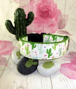 Hundehalsband Kaktus Halsband Hund Nylon Klickverschluss Kunststoffverschluss oder Metallverschluss wahlweise Zugstopp verstellar breit