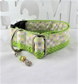 Hundehalsband Mein Herz grün/grau Halsband Hund verstellbar wahlweise mit Klickverschluss Kunststoff oder Metall Verschluss oder Zugstopp Verschluss - Handarbeit kaufen