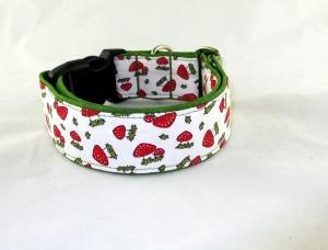 Hundehalsband Glückspilz Halsband Hund Nylon Klickverschluss Kunststoffverschluss oder Metallverschluss wahlweise Zugstopp verstellbar breit   - Handarbeit kaufen