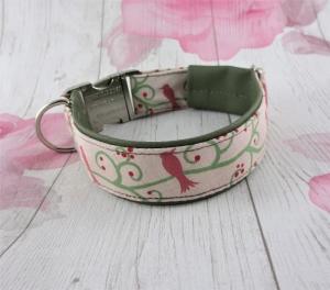 Hundehalsband Birdy Halsband verstellbar mit Klickverschluss Metallverschluss gepolstert mit Kunstleder   - Handarbeit kaufen