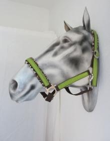 Pferdehalfter Safari handgefertigtes Stallhalfter Reithalfter Halfter für Pferde Größe Warmblut verstellbar - Handarbeit kaufen