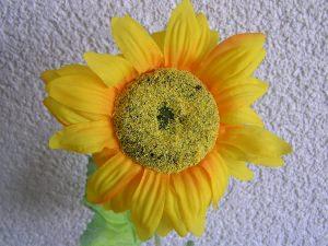6 Deko - Sonnenblumen (Restmenge)