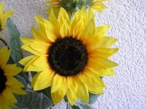 4 Sonnenblumen naturgetreu gearbeitet (Restmenge)