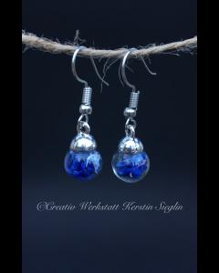 Leuchtend blaue Ohrhänger mit echten Kornblumen