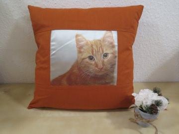 Schöner Kissenbezug mit einer Süßen Haus- Katze