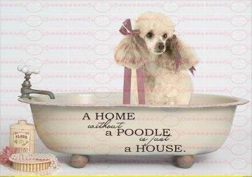 Shabby Chic Bügelbild Hund Badewanne Pudel
