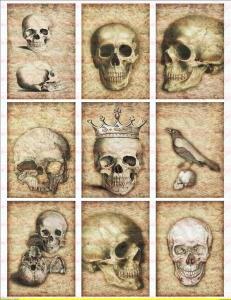 9 Skull Totenkopf Sepia Bügelbilder auf Din A4 Transferfolie DIN A4 NO.1271