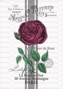 Bügelbild Rose Schrift french Paris Rot Shabby Vintage A4 NO. 1614
