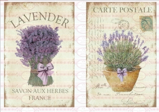 Bügelbild Lavendel Lila Blumen Frühling Paris french A4 NO. 1659