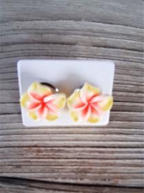 Blüten Ohrringe Blumen Ohrstecker handmodelliert aus Fimo Ohrschmuck aus Polymer Clay   - Handarbeit kaufen