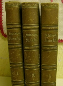 1. bis 3. Band Sturmflut von Friedrich Spielhagen,pro Band ca.389 Seiten.Staackmann Verlag 1877. - Handarbeit kaufen