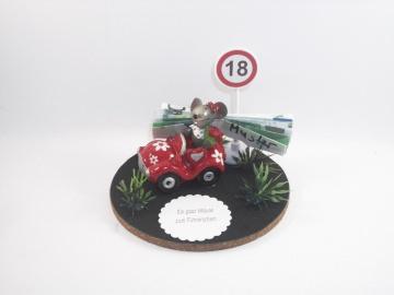 Geldgeschenk Geburtstag, Mäuse, Führerschein, Auto, 18, Maus im Auto