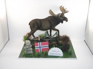 Geldgeschenk, Urlaub, Geburtstag,Norwegen, Elch, Troll, Inukshuk, Skandinavien, Finnland, Schweden