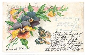 Alte Jugendstil Postkarte  ★ VEILCHEN UND SCHMETTERLING ★ mit Gedicht, 1901
