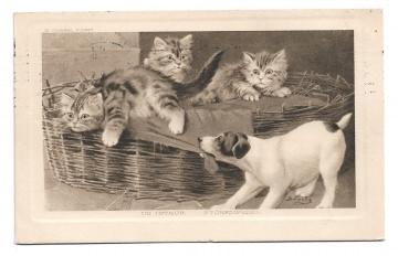 Alte Postkarte Künstlerkarte  ★DER STÖRENFRIED★ Hund ärgert kleine Katzen, 1909