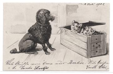 Alte Postkarte  ★SCHWARZER PUDEL UND KLEINE KATZEN ★ Künstlerkarte Lithographie  von 1902