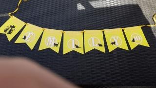 Wimpelkette KATZE aus Papier zum Geburtstag individualisierbar, incl. Verpackungsbox