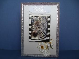 Geburtstagskarte für alle Afrikaliebhaber mit einem Zebramotv
