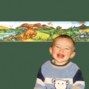 Kinderbordüre - selbstklebend   Urzeit Dinos - 18 cm Höhe   Vlies Bordüre mit T-Rex, Langhals, Stegosaurus, Flugsaurier & Vulkan - handgemalt - Handarbeit kaufen