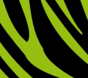 Wandbordüre - selbstklebend | Zebrastreifen - schwarz farbig - 13 cm Höhe | Vlies Bordüre mit tierischem Muster - Zebra - Handarbeit kaufen