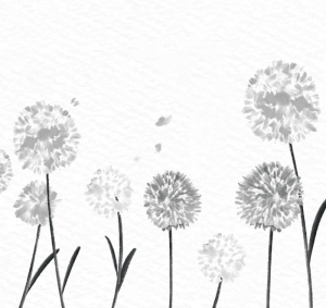 Wandbordüre - selbstklebend | Watercolor Pusteblume - grau - 20 cm Höhe | Vlies Bordüre mit romantischem floralem Muster im Aquarell Stil