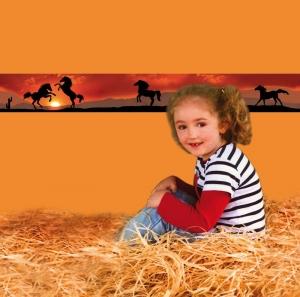 Kinderbordüre - selbstklebend   Wildpferde - 18 cm Höhe   Vlies Bordüre mit Sonnenuntergang u. Wildpferden in der Prärie - Handarbeit kaufen