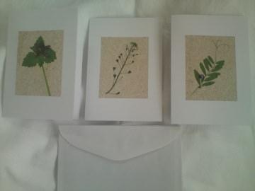 Sandkarten, Grußkarten, geschmückt mit gepressten Pflanzen und Sand - Handarbeit kaufen