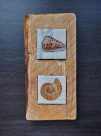Holzbild mit Fliesen   ♥  * Ocean *  aus  Palettenholz und handgefertigten Fliesen Muschel - Handarbeit kaufen
