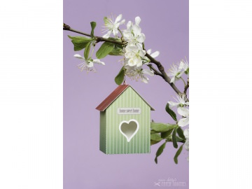 Bastelbogen »Vogelhaus« — 09.blassgrün - Handarbeit kaufen