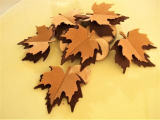 6 Herbstblätter Filz 3-dimensional Brauntöne