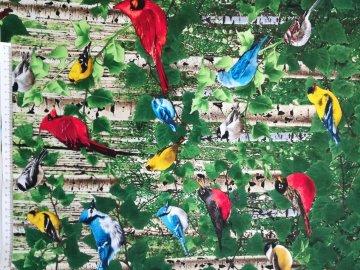 Baumwollstoff in Patchworkqualität grün mit bunten Vögeln ✂ 100% Baumwolle ✂ 112cm