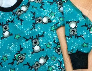 Sweatshirt RENTIERE für Jungen und Mädchen Baumwollsweat mint Sterne Gr.98/104 und 110/116
