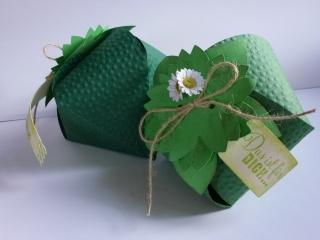 ♥♥2 Geschenkverpackungen-Beeren-Erdbeeren~grün~Nr.345♥♥