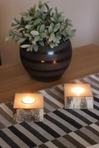 1er Teelichthalter  aus einen Birkenstamm ♥ Ideal auch als Tischdeko ♥ Hochzeitdeko ♥ Weihnachstdeko