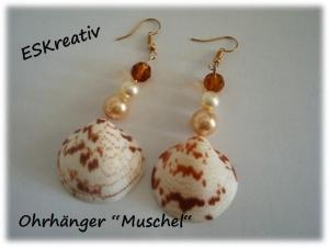 Muschelschmuck-Set / Ohrhänger mit Karibikmuscheln / versilberte Ohrhänger