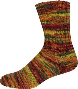 Sockenwolle Family Socks Color 225g Farbe: 2314 - Handarbeit kaufen
