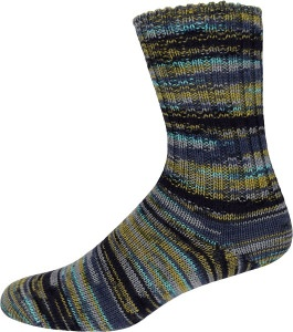 Sockenwolle Family Socks Color 225g Farbe: 2315