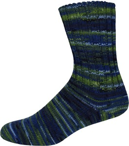 Sockenwolle Family Socks Color 225g Farbe: 2316