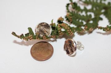 Ohrstecker mit eingefasster Birken Rinde 10 mm Durchmesser