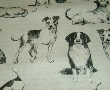 Hunde  Hund Dog  Baumwolle Patchworkstoff  für Hundeliebhaber  50x110 cm